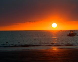 viaje en oferta a ** Escapadas a la Playa ** Hotel Villas Playa Samara